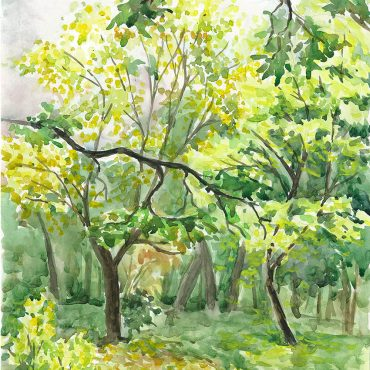 water color painting art irish artist autumn park watercolor
